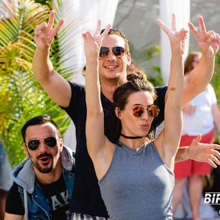 Birdbath Day Party